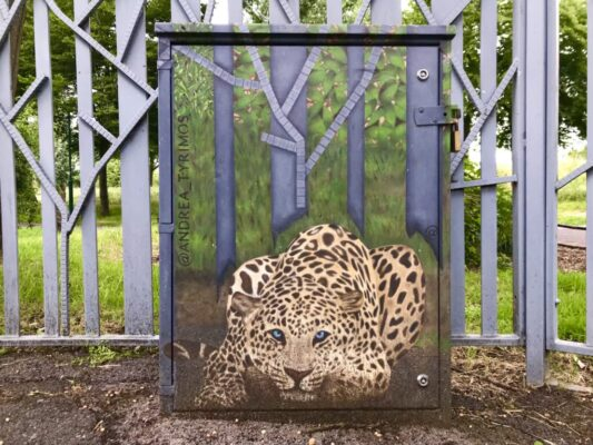 Painted leopard outside Pasley Park